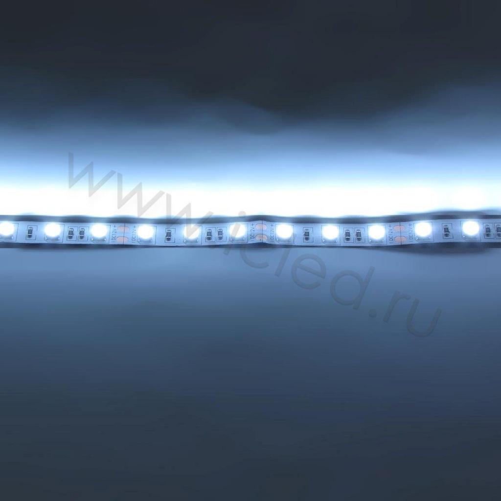 Светодиодная лента Ecomon Class, 5050, 60Led/m, White, 12V, IP33