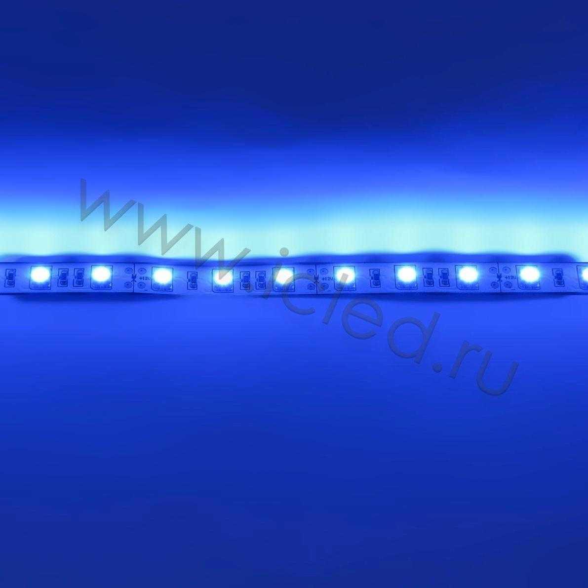 Светодиодная лента Class B, 5050, 60led/m, Blue, 12V, IP33