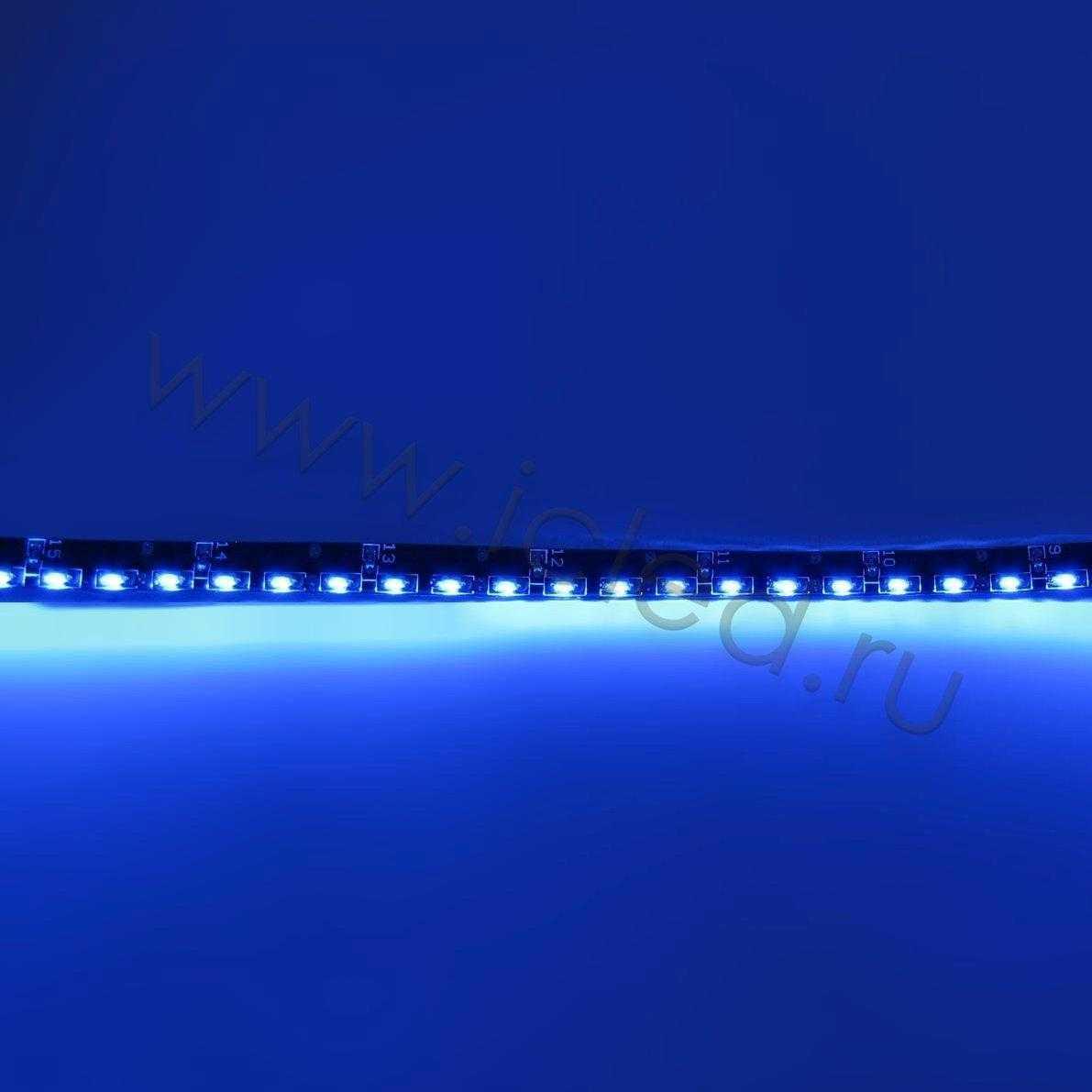 Светодиодная лента Class B, 335, 120 led/m, Blue,12V, IP65