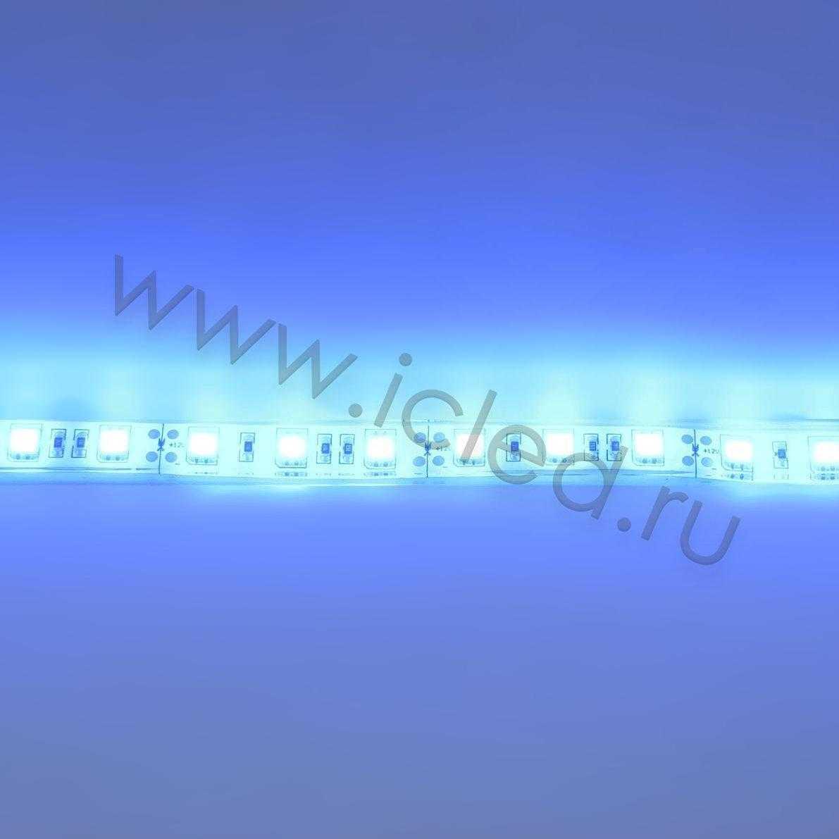 Светодиодная лента Class B, 5050, 60led/m, Blue, 12V, IP68
