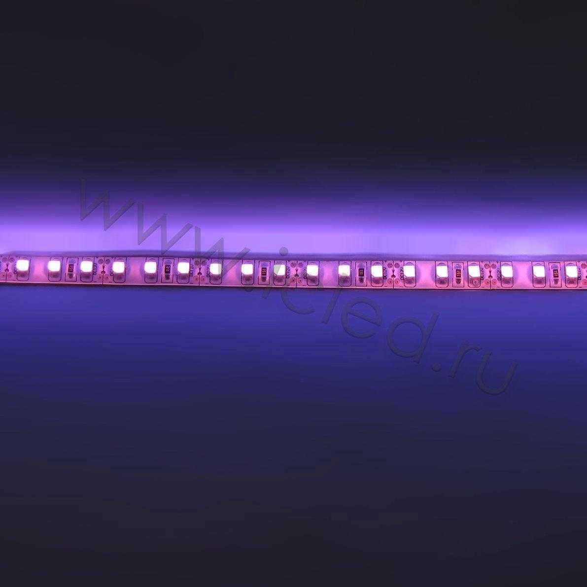 ветодиодная лента Class B, 3528, 120 led/m, Purple,12V, IP65