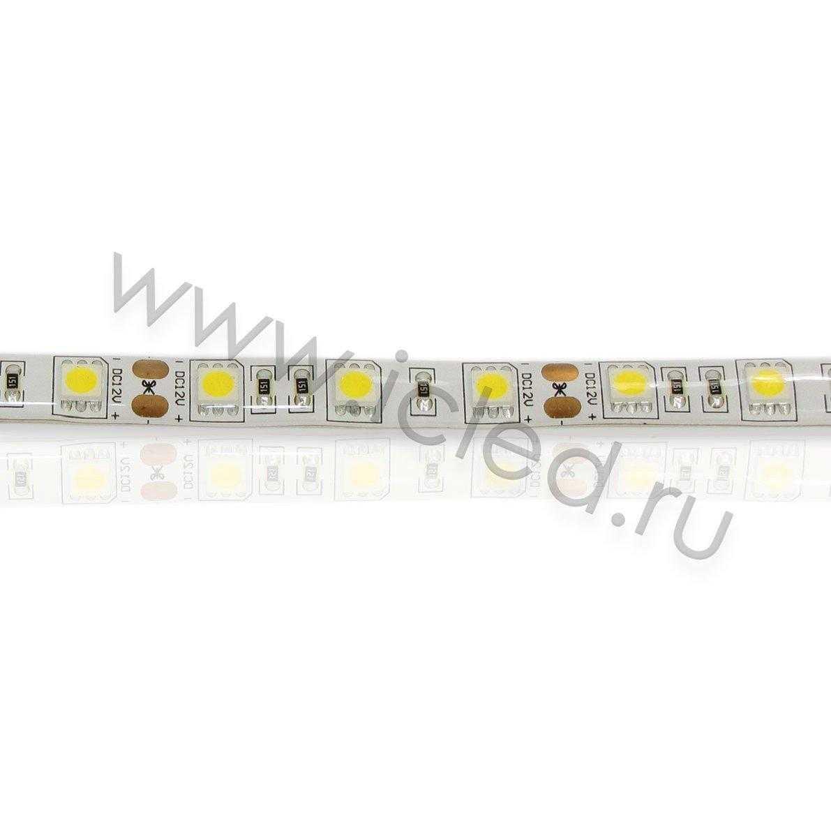 Светодиодная лента Class High, 5050, 60 led/m, Warm White,12V, IP65