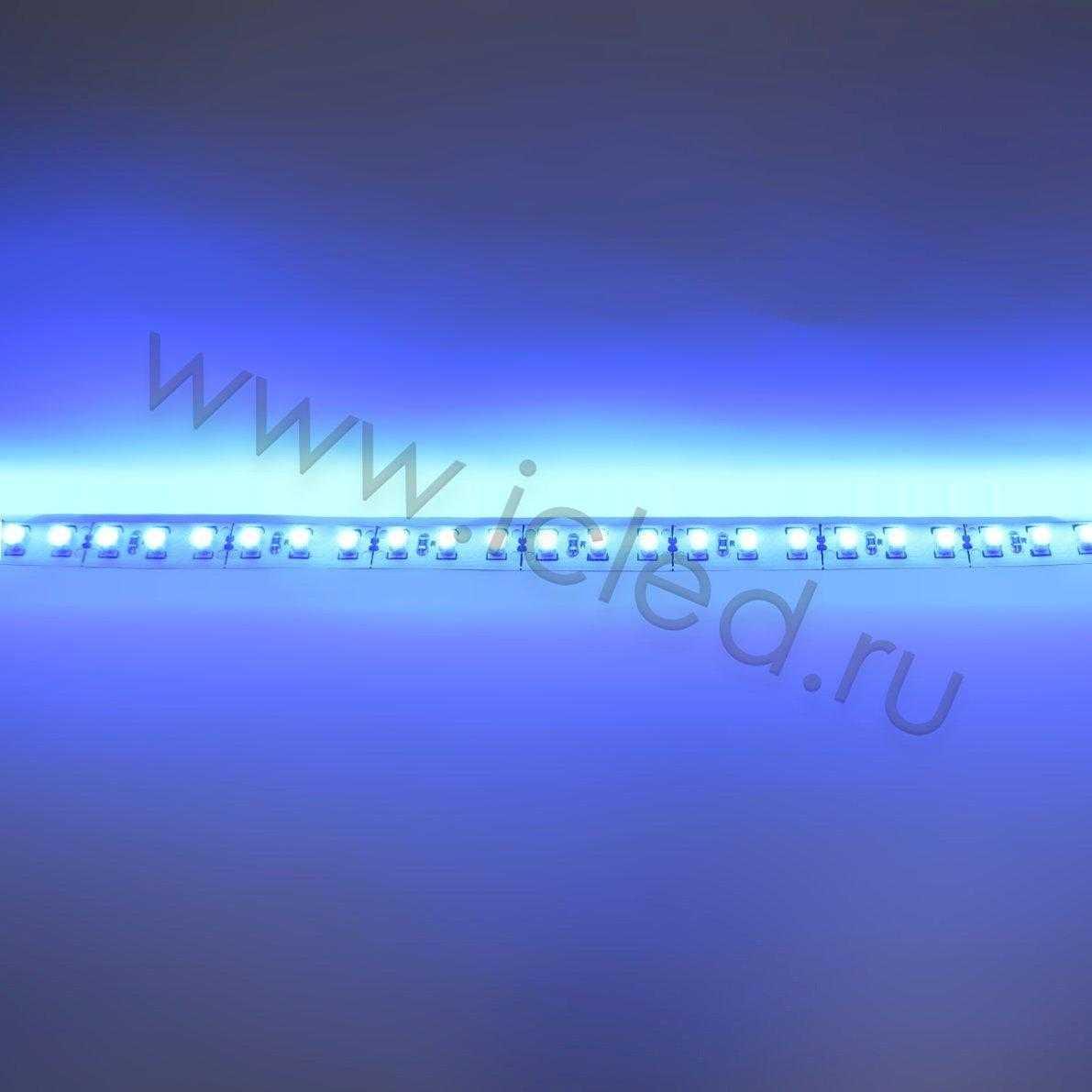 Светодиодная лента Econom class, 3528, 120led/m, Blue, 12V, IP33