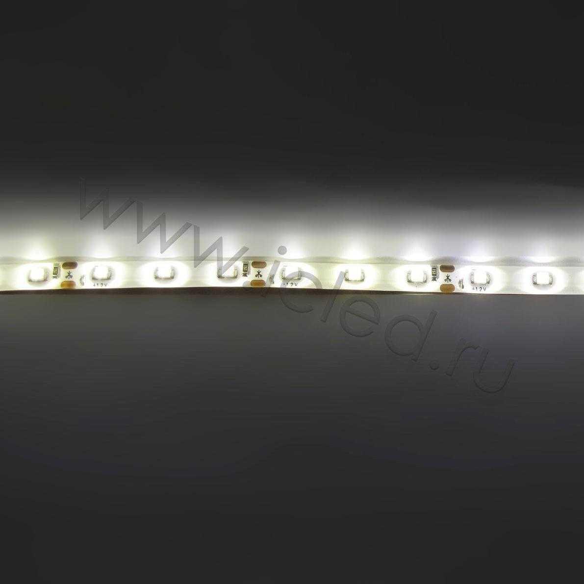 Светодиодная лента Econom class, 3528, 60led/m, Warm White, 12V, IP65