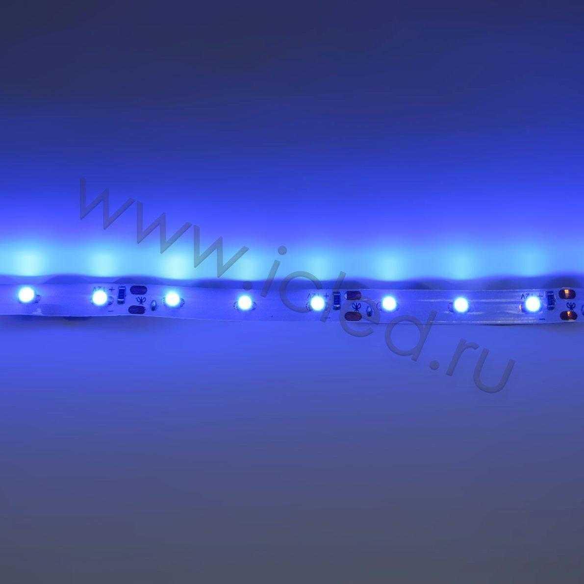 Светодиодная лента Econom class, 3528, 60led/m, Blue, 12V, IP33