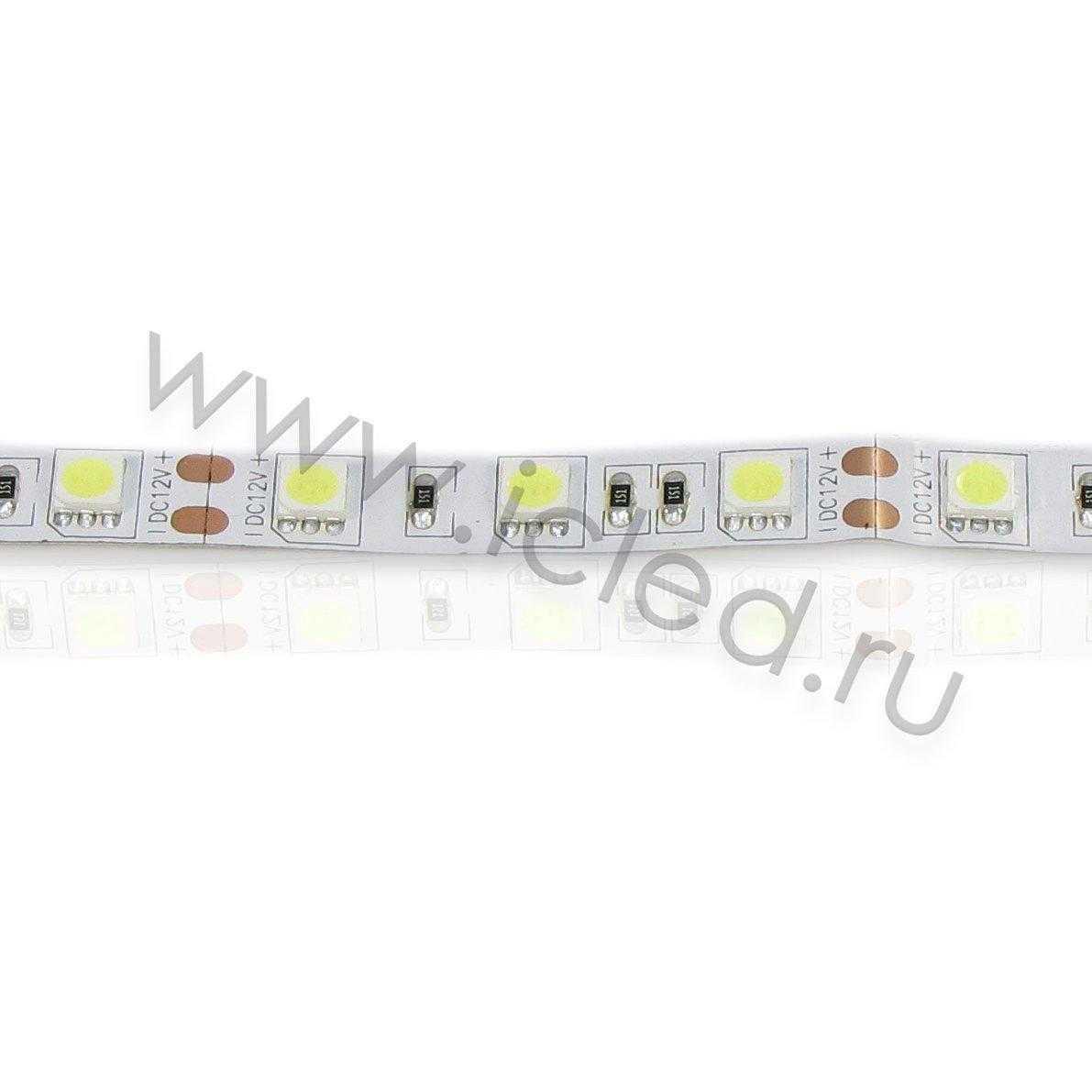 Светодиодная лента Econom class, 5050, 60led/m, White, 12V, IP33