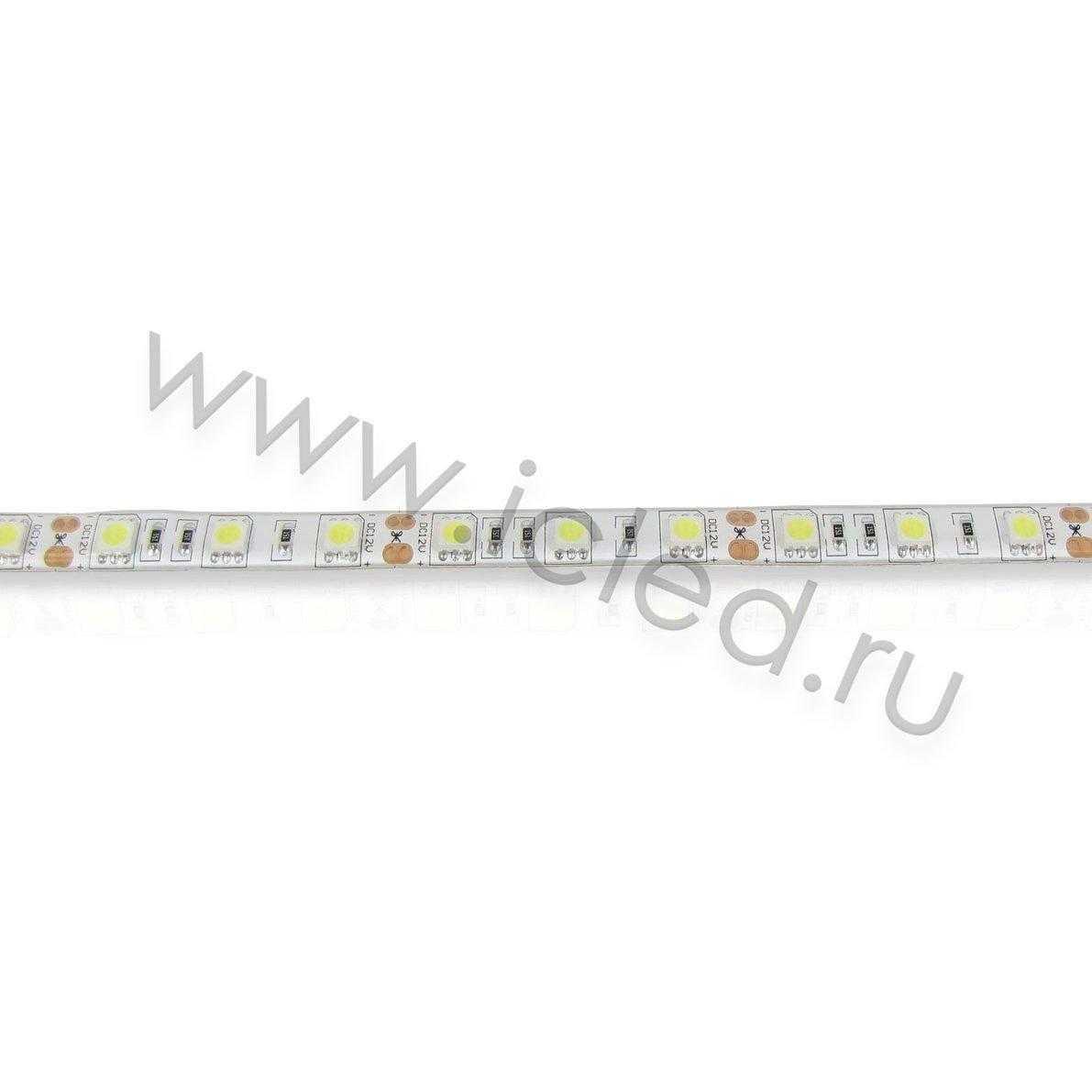 Светодиодная лента Econom class, 5050, 60led/m, White, 12V, IP65