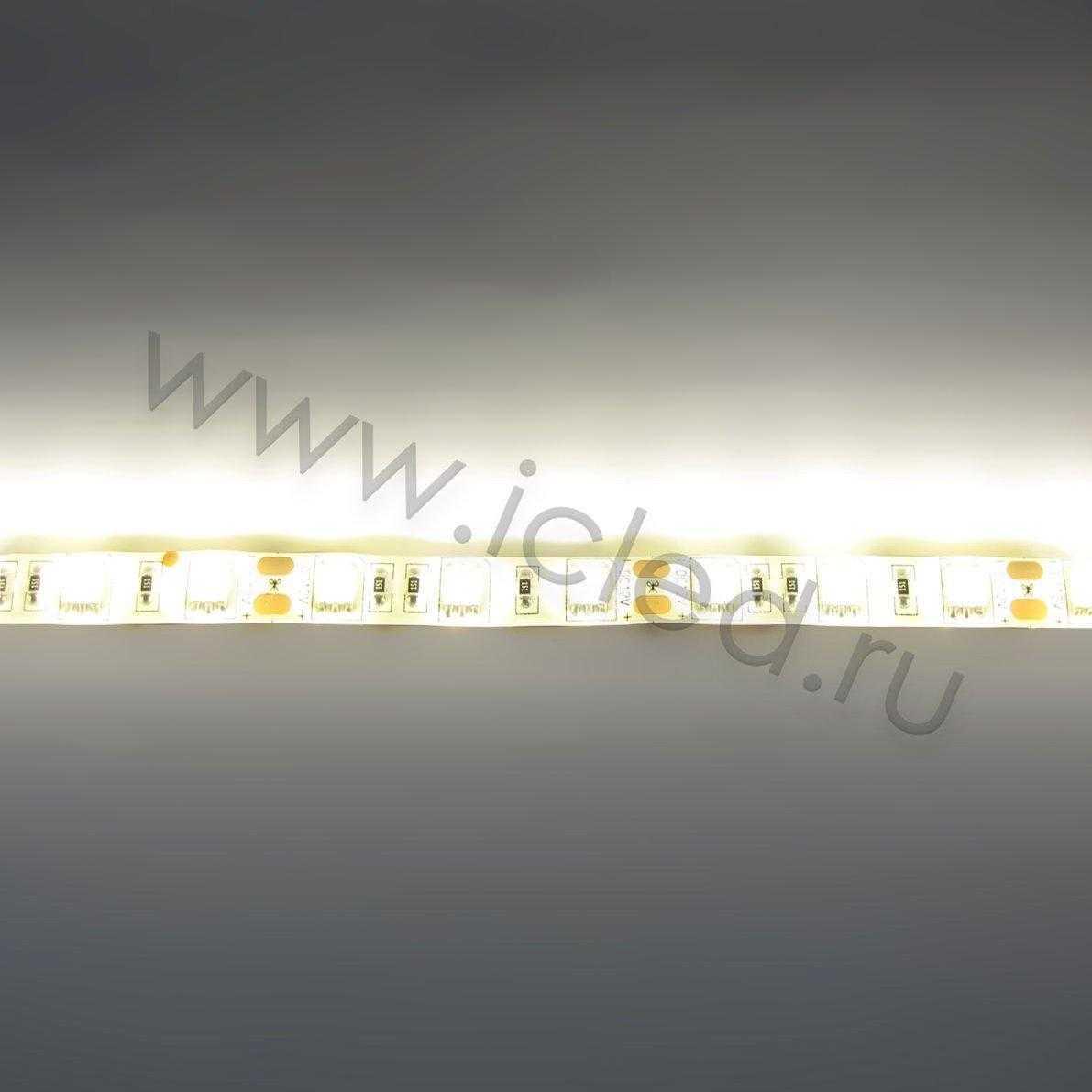 Светодиодная лента Econom class, 5050, 60led/m, Warm White, 12V, IP65